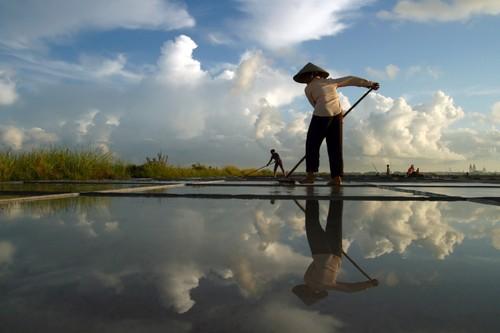 Ngắm vẻ đẹp trong lao động của phụ nữ Việt Nam  - ảnh 5