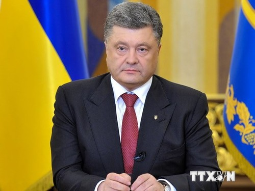 Presidente de Ucrania propone nueva conversación del Grupo de contacto - ảnh 1