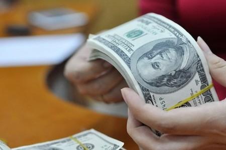 Destacan el rol de la administración flexible del tipo de cambio en 2016 - ảnh 1