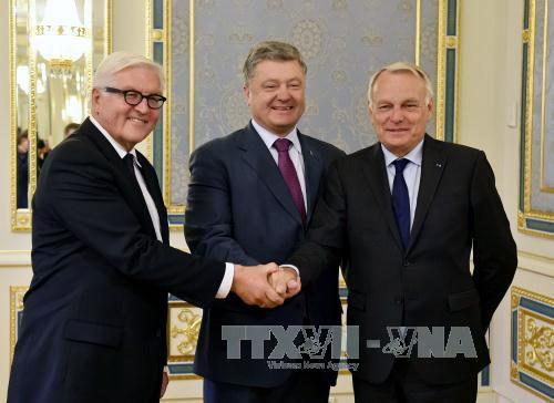 Gobierno de Ucrania se compromete a respetar el alto al fuego con fuerzas independentistas - ảnh 1