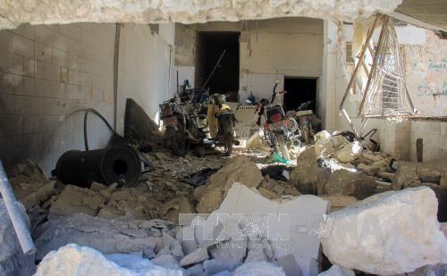 Consejo de Seguridad suspende votación de la resolución sobre ataque químico en Siria  - ảnh 1