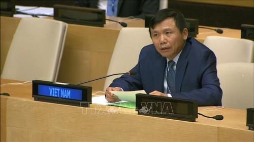 Vietnam llama a la ayuda internacional para el pueblo palestino - ảnh 1