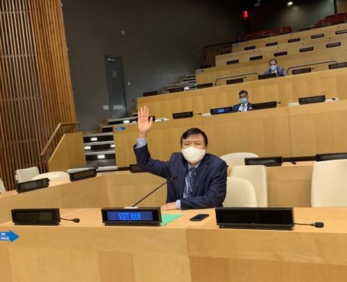 Consejo de Seguridad de la ONU aborda el tráfico de personas y la situación en los Altos del Golán - ảnh 1