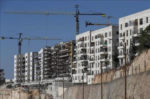 Colonies en Cisjordanie: l'ONU exhorte Israël à revenir sur sa décision - ảnh 1