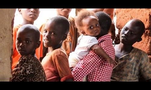 Le Vietnam appelle à remédier à la famine engendrée par les conflits armés - ảnh 1