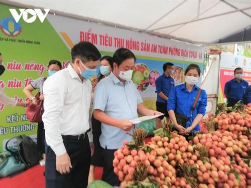 Mise en service du premier point d'aide à l'écoulement des produits agricoles pendant la pandémie - ảnh 1