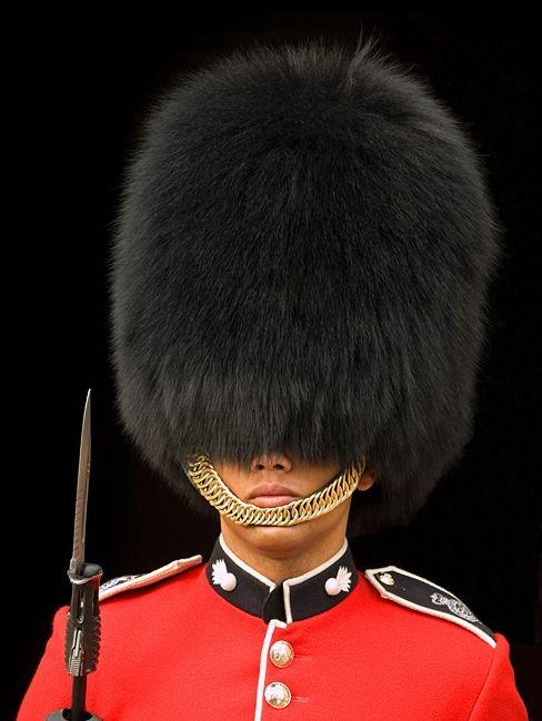 England Queen's Guard - ảnh 1
