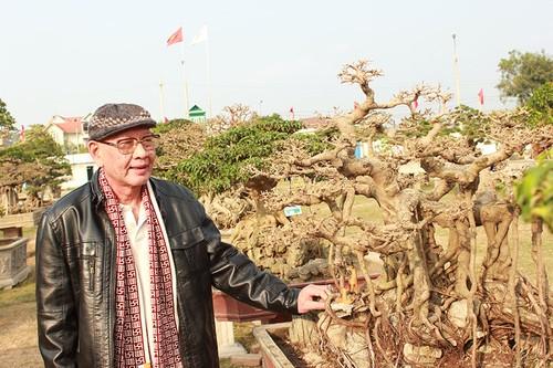 Triển lãm cây cảnh tại Hà Nội thu hút hàng vạn khách tham quan - ảnh 2