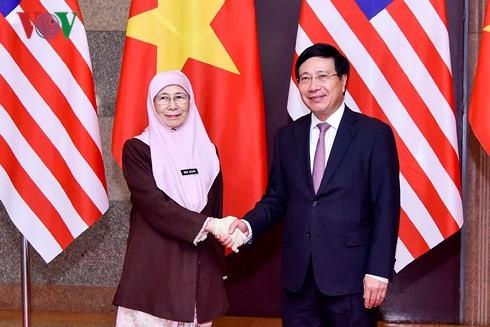 Phó Thủ tướng Phạm Bình Minh hội đàm với Phó Thủ tướng Malaysia - ảnh 1