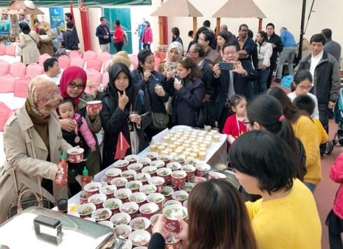 Quảng bá văn hóa Việt Nam trong Cộng đồng ASEAN tại Ankara - ảnh 2