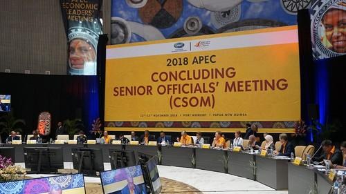 Hội nghị tổng kết các quan chức cao cấp APEC chuẩn bị cho Tuần lễ Cấp cao APEC 2018  - ảnh 1