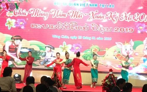 Các cơ quan đại diện ngoại giao Việt Nam ở nước ngoài đón Xuân Kỷ Hợi - ảnh 1