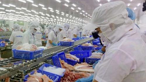 Xuất khẩu thủy sản sang EU tận dụng tốt lợi thế từ Hiệp định EVFTA - ảnh 1
