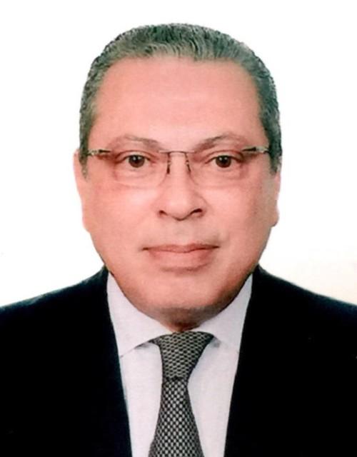 """Đại sứ Ai Cập """"thật sự ấn tượng"""" với bài viết của Tổng Bí thư Nguyễn Phú Trọng - ảnh 1"""