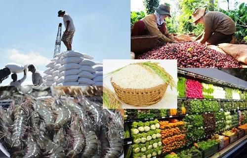 Thủ tướng Chính phủ chỉ đạo thúc đẩy sản xuất, lưu thông, XK nông sản - ảnh 1