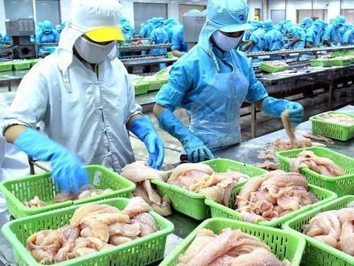 Thêm 12 cơ sở chế biến cá da trơn của Việt Nam được xuất khẩu sang Hoa Kỳ  - ảnh 1