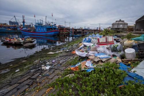 """UNESCO và Cocacola phát động sáng kiến """"Thanh niên và Đổi mới sáng tạo vì Đại dương xanh""""""""  - ảnh 2"""