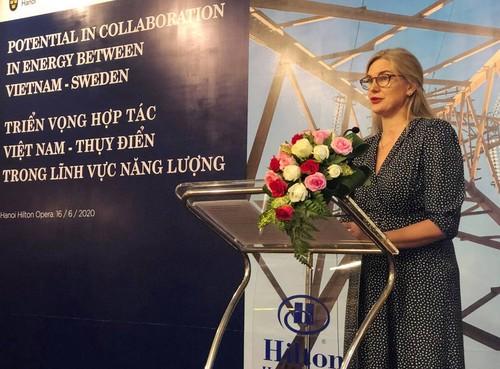 Khởi động hợp tác mới về năng lượng giữa Việt Nam và Thụy Điển - ảnh 2
