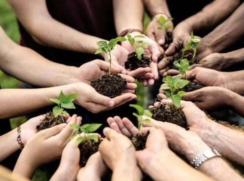 Báo chí luôn đồng hành cùng sự phát triển bền vững của đất nước - ảnh 1