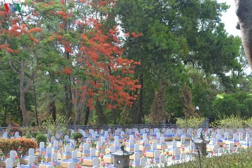 Tháng 7 tri ân nơi đất lửa Quảng Trị - ảnh 2