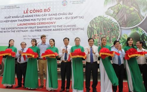 Bến Tre xuất khẩu lô trái cây đầu tiên sang thị trường EU - ảnh 1