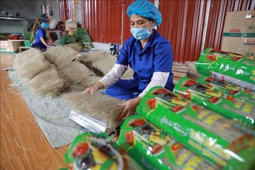 Việt Nam có 3.200 sản phẩm OCOP - ảnh 1