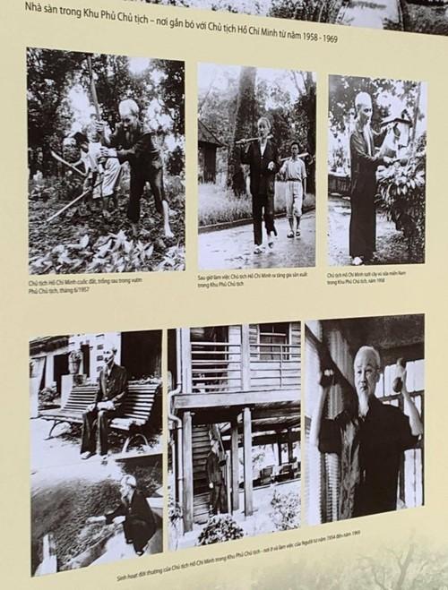 Nhiều hoạt động kỷ niệm ngày sinh Chủ tịch Hồ Chí Minh ở trong nước và nước ngoài - ảnh 1
