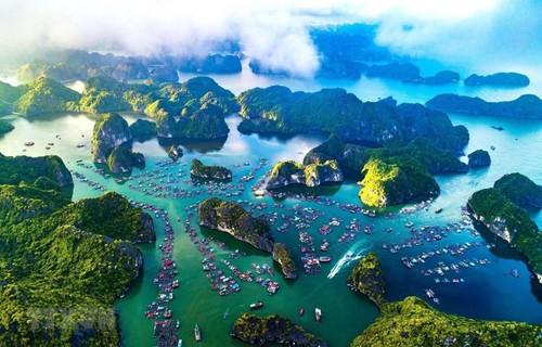 Bảo vệ đại dương và phát triển bền vững sinh kế biển Việt Nam - ảnh 1