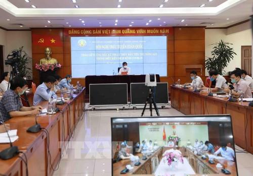 Sản xuất nông sản xuất khẩu tuân thủ các hướng dẫn của quốc tế - ảnh 1