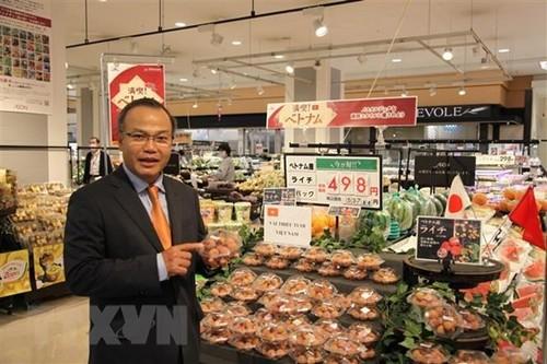Bắc cầu đưa nông sản Việt sang Nhật Bản - ảnh 1