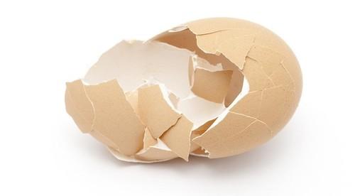 Nhà khoa học Việt Nam tạo vật liệu làm xương nhân tạo từ vỏ trứng - ảnh 1