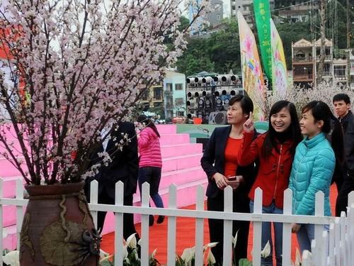 Lễ hội Hoa Anh đào Nhật Bản 2014 tại Hạ Long  - ảnh 1