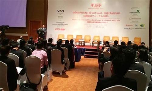 Việt Nam-Nhật Bản thảo luận chính sách, tăng cường quan hệ hợp tác kinh tế  - ảnh 1