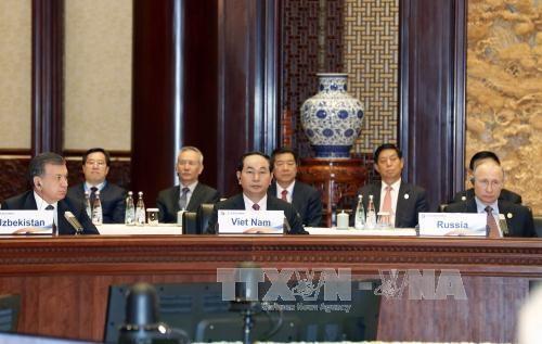 Việt Nam luôn mở rộng hợp tác và kết nối quốc tế vì hoà bình, hợp tác và phát triển - ảnh 1
