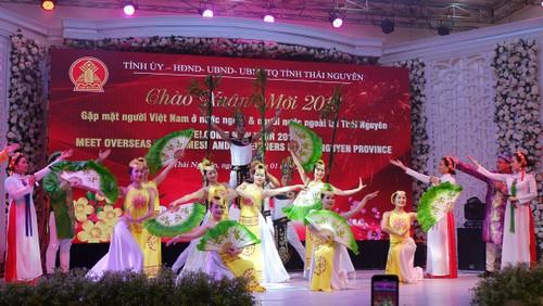 Tỉnh Thái Nguyên tổ chức chương trình chào xuân gặp mặt kiều bào và người nước ngoài nhân dịp xuân Kỷ Hợi 2019 - ảnh 1