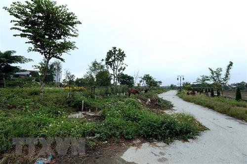 """Cần Thơ sẽ có công viên """"hạ tầng xanh"""" - ảnh 1"""