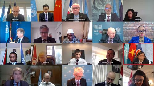 Việt Nam kêu gọi cộng đồng quốc tế hỗ trợ Syria ứng phó với dịch COVID-19  - ảnh 1