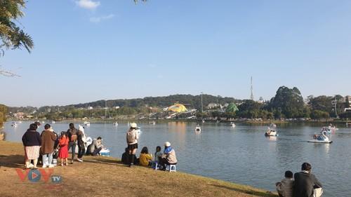 Thành phố Đà Lạt thu hút nhiều khách du lịch đến vui xuân - ảnh 1