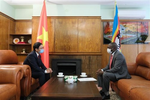 Cộng đồng người Việt Nam tại Nam Phi hỗ trợ các nước châu Phi phòng, chống dịch COVID-19 - ảnh 1