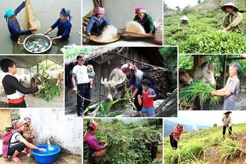 Thúc đẩy các chính sách đảm bảo an ninh nước để phát triển bền vững - ảnh 1