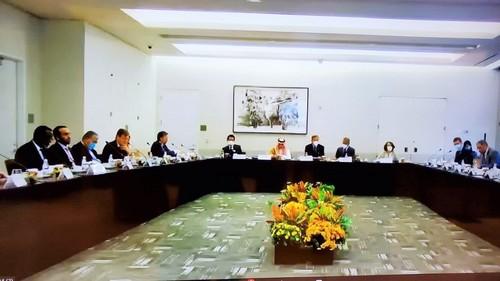 Việt Nam ưu tiên hợp tác toàn cầu nhằm ứng phó đại dịch COVID-19 - ảnh 1