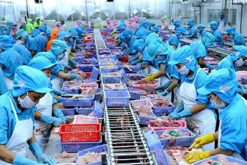 Объём экспорта рыбной продукции составил почти 2,4 миллиарда долларов - ảnh 1