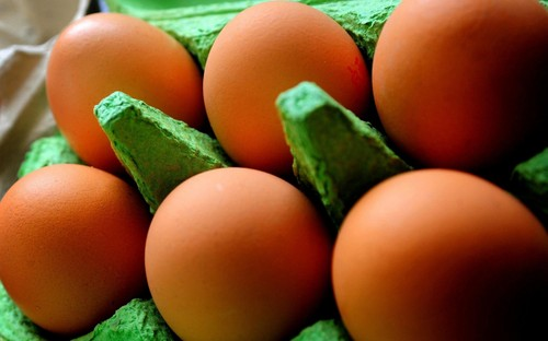 Fipronil contaminated eggs scandal - ảnh 1