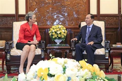 President receives Dutch Ambassadors - ảnh 1