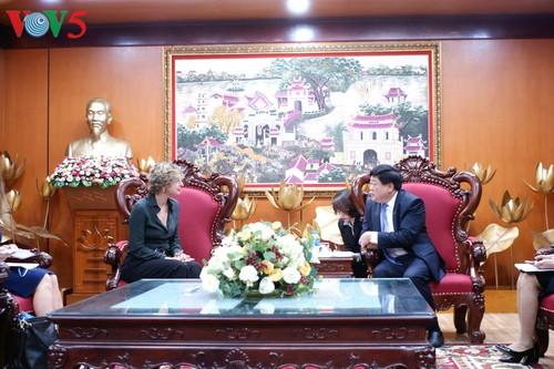 Vietnam, Netherlands strengthen media cooperation - ảnh 1