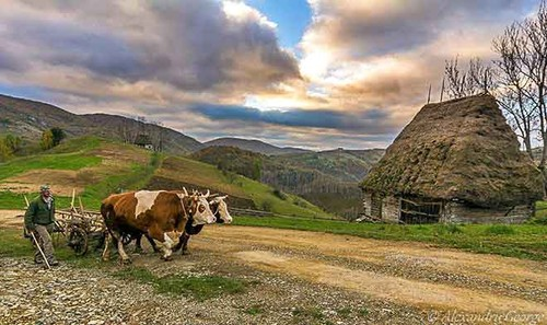 Romania's Culture and Lifestyle - ảnh 5