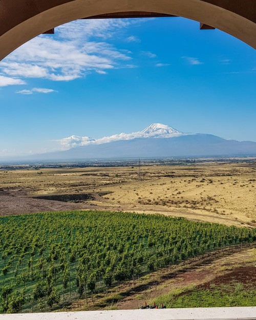 What You Need to Know About Armenian Wine - ảnh 1