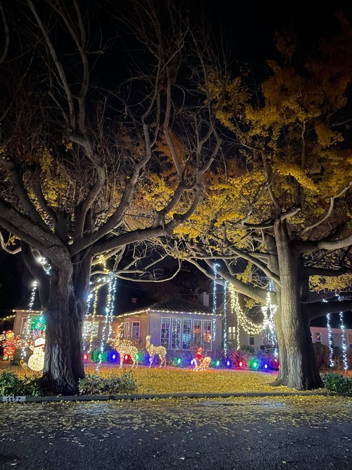 2020 Christmas celebrations during COVID-19 in US - ảnh 1