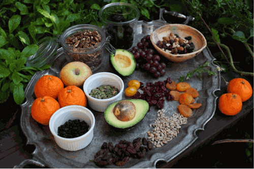 Israel's Tu Bishvat – New Year for the trees - ảnh 4