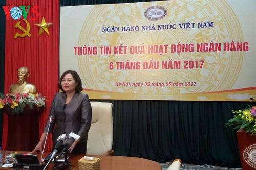 Banco Estatal de Vietnam mantiene apoyo activo a la población en producción y negocios - ảnh 1